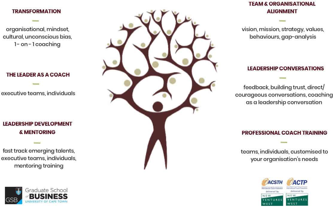 Enabling dynamic leadership