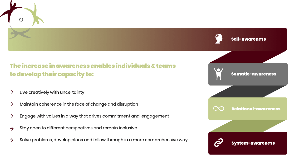 How we build capacity through our Integral Approach